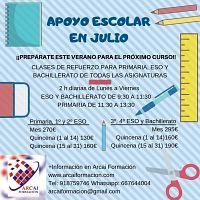 Clases intensivas de Apoyo escolar en Julio